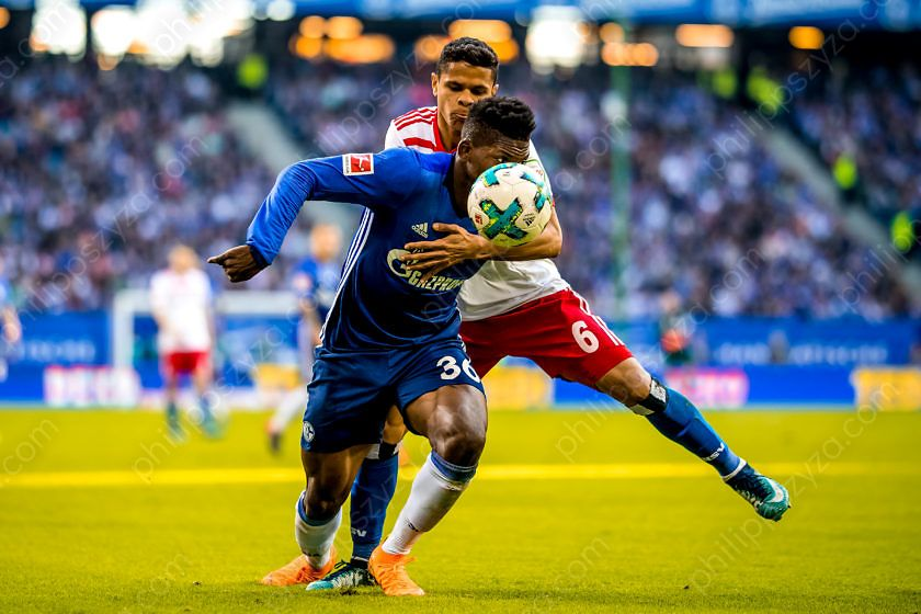 Hamburger SV - FC Schalke 04 © Philipp Szyza